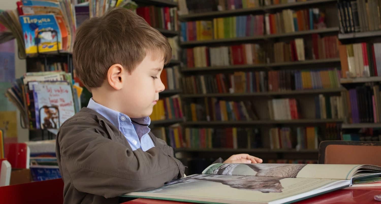 Vereniging Openbaar Onderwijs